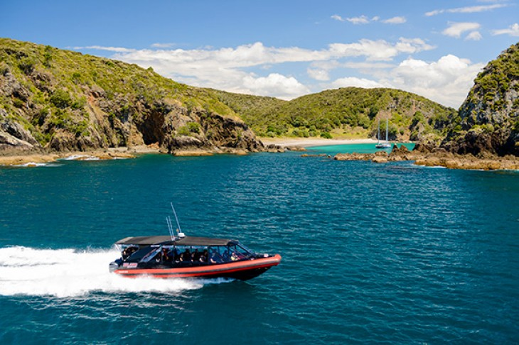 Bay of Islands cruise ship info Island Adventurer